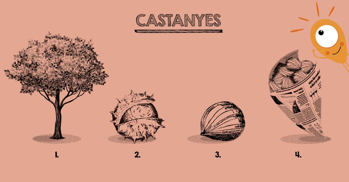 castanyer-castanya