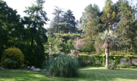 jardi dendrologic