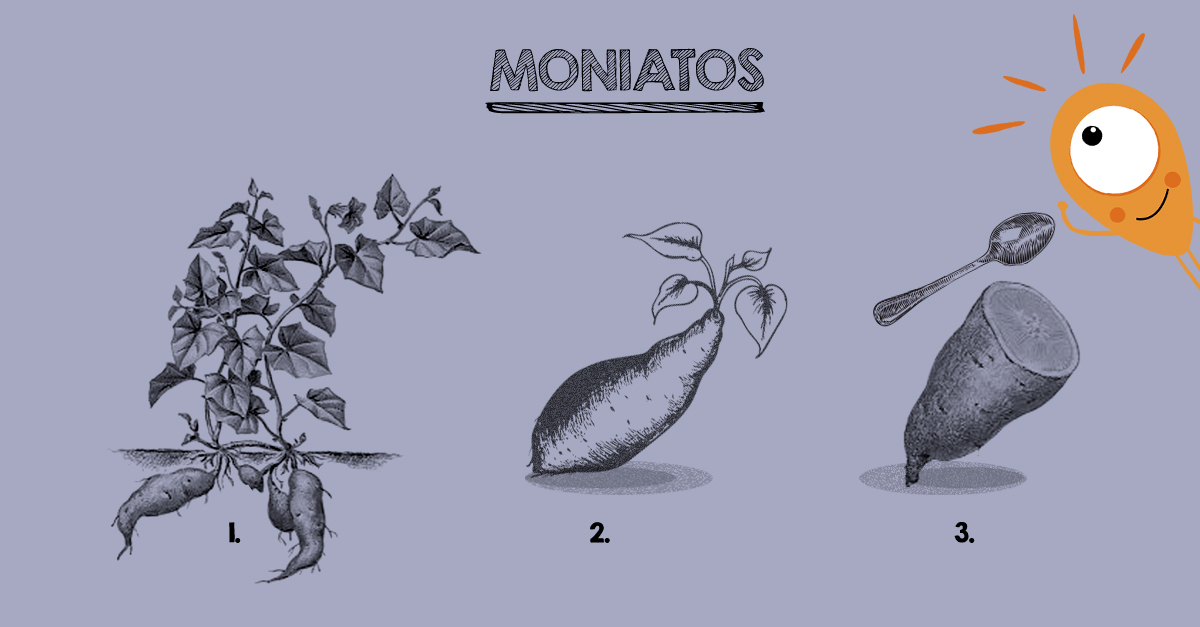 moniatera-moniatos
