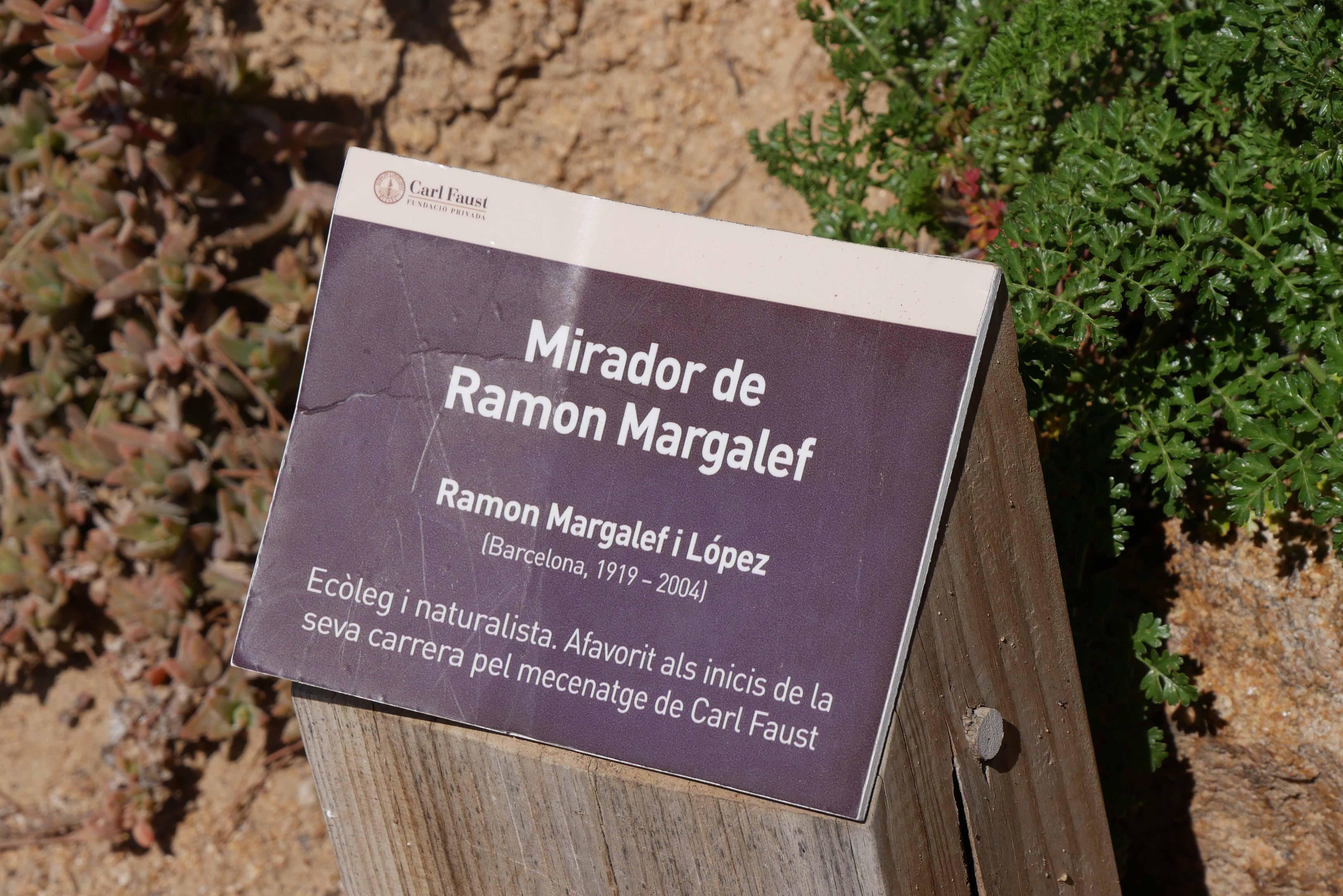 Ruta Margalef 7
